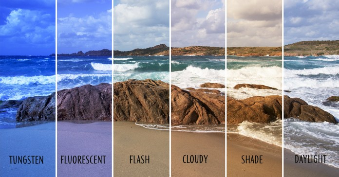 The Friday Roundup – Color Grades, White Balance and Audio